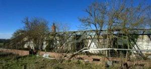 Thomas Messenger greenhouse